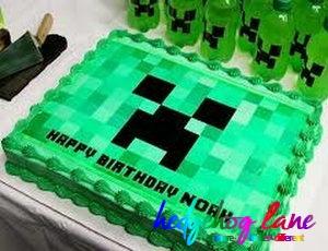 Minecraft Edible Image Cake Hedgehog LaneThemed Party Decor