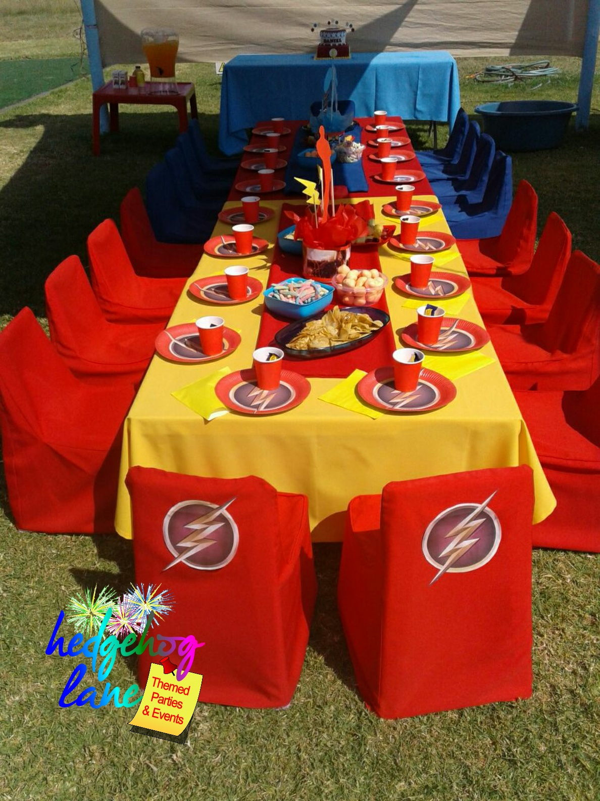 Captain America And Flash Party Hedgehog Lane Themed